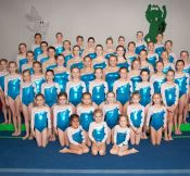 2012-2013 Competitive Team